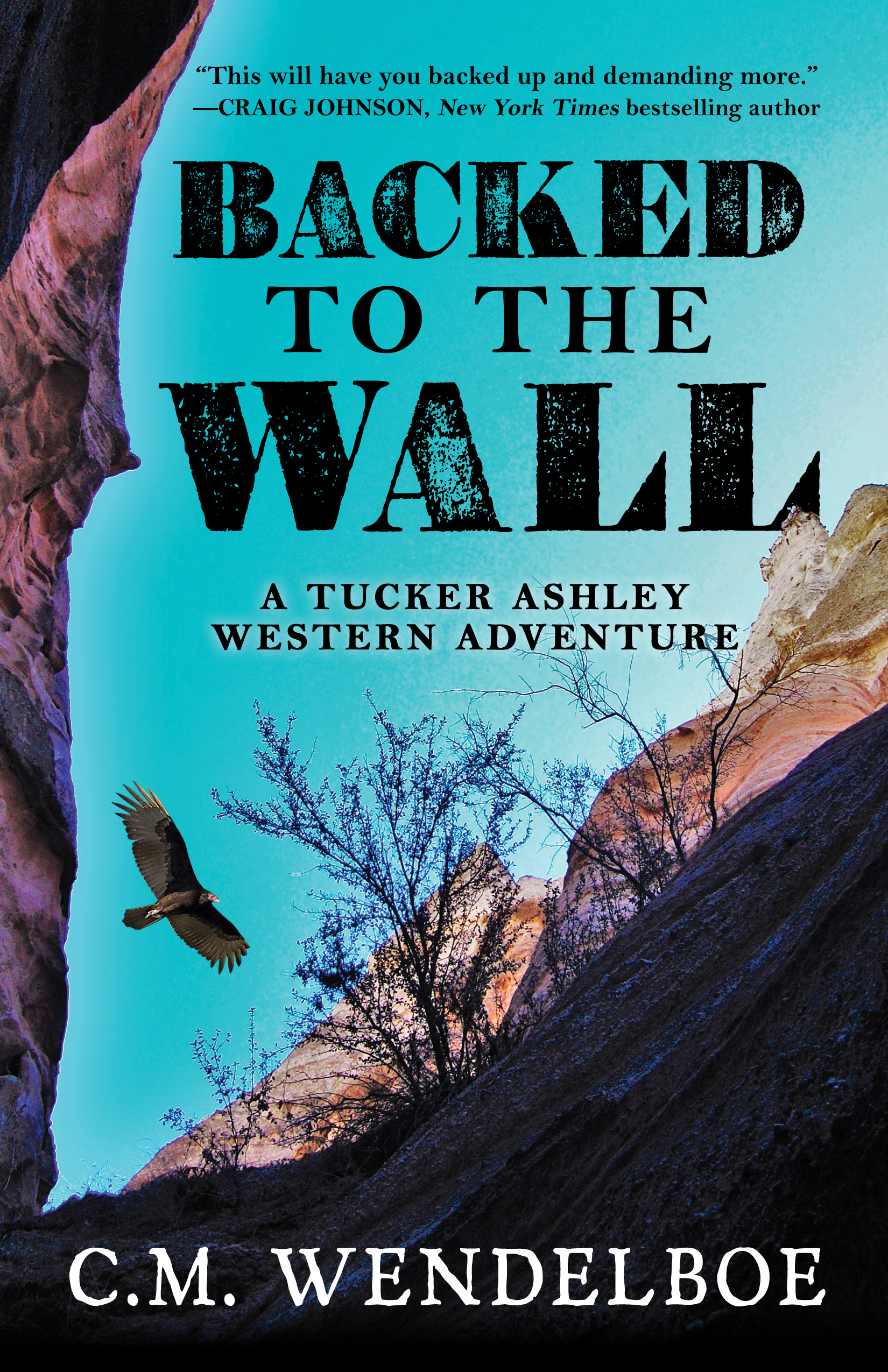 Backed to the Wall by C. M. Wendelboe (Front Cover)