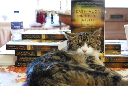 Mystery Bookstore Cat